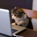 スマホが遅い!パソコン(PC)でプレイする方法。iPadなどのタブレットもあり。